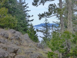 view from the ridgeline trail