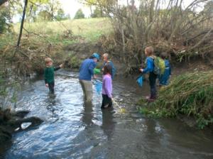 River-Spies-in-Creek