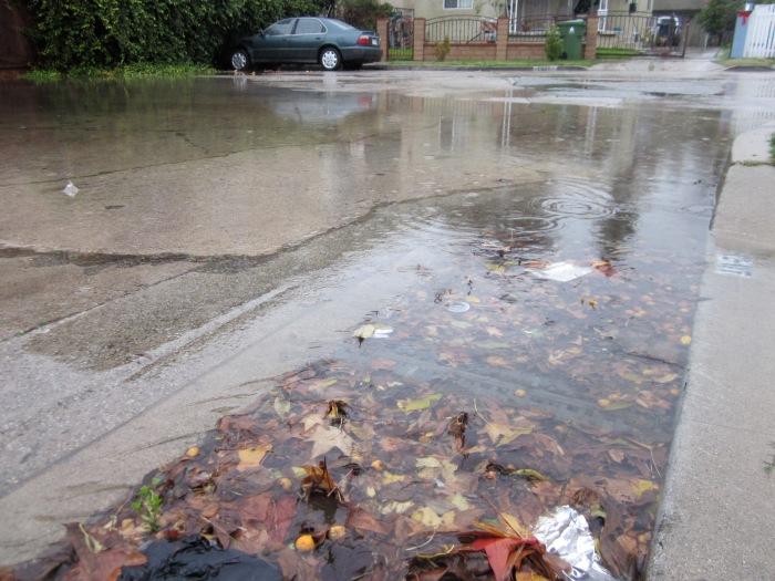 Flooded-storm-drain.jpg
