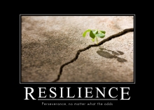 resilience-perseverance