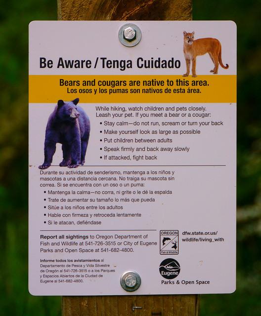 Bear and Cougar Warning Sign